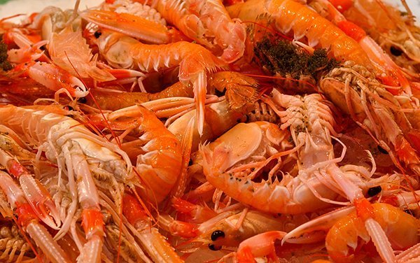 Santa Caterina Market 008 | Santa Caterina Market  –  Barcelona
