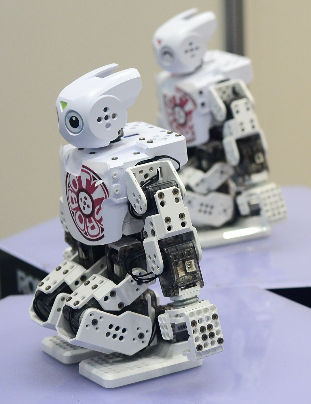 2015-Robot-Show-013 International Robot Exhibition  -  Tokyo, Japan Japan Tokyo  Tokyo Tech Robots Japan Cool
