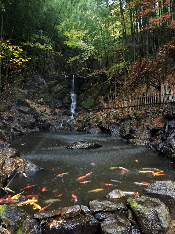 Waterfall at Takefue Ryokan - the best Ryokan in Japan
