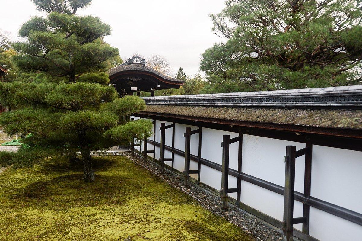 Ninna ji 010 | The idyllic Ninna-ji Temple –  Kyoto