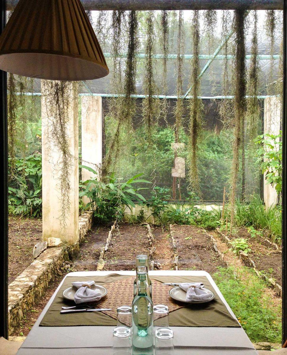 garden at the Coqui Coqui Hotel Coba