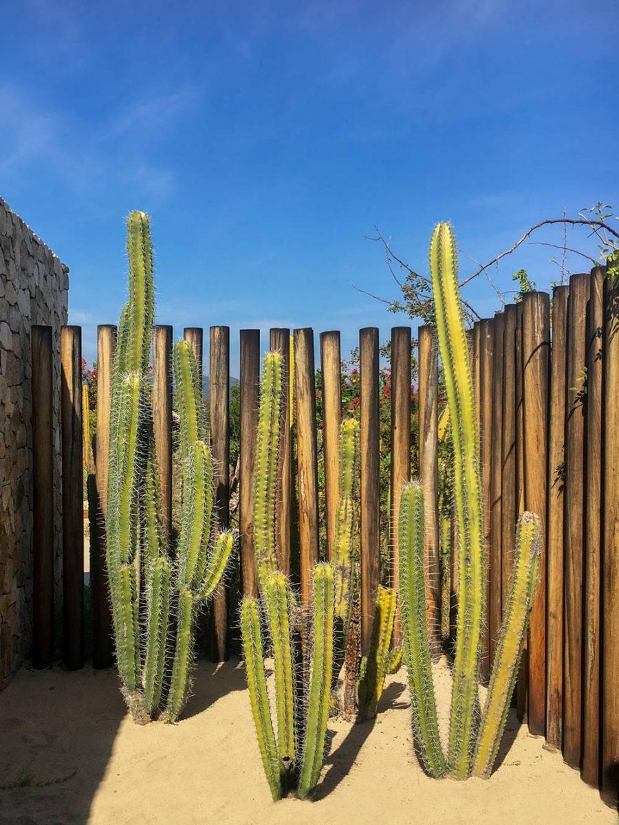 Hotel Escondido 001 | Hotel Escondido in Oaxaca