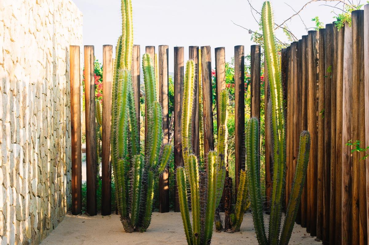 Hotel Escondido 002 | Hotel Escondido in Oaxaca