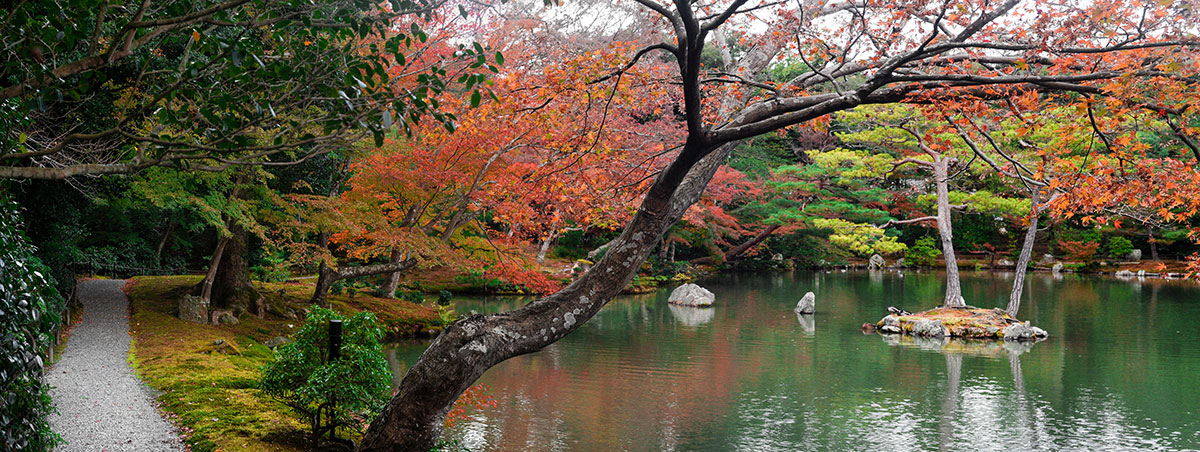 Gardens at the Golden Temple in Kyoto