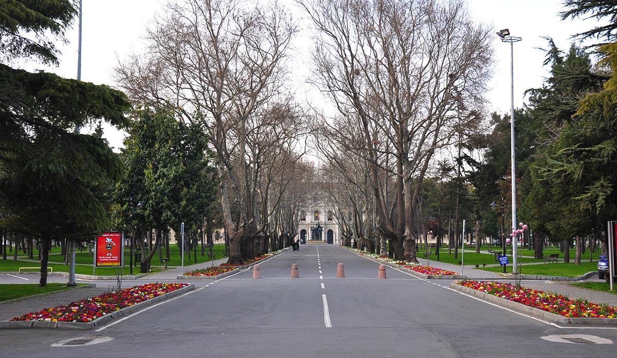 istanbul-university